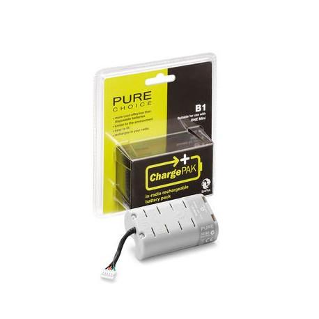 pure-chargepak-b1