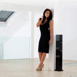 Monitor Audio, Radius270 Haut-parleurs au sol