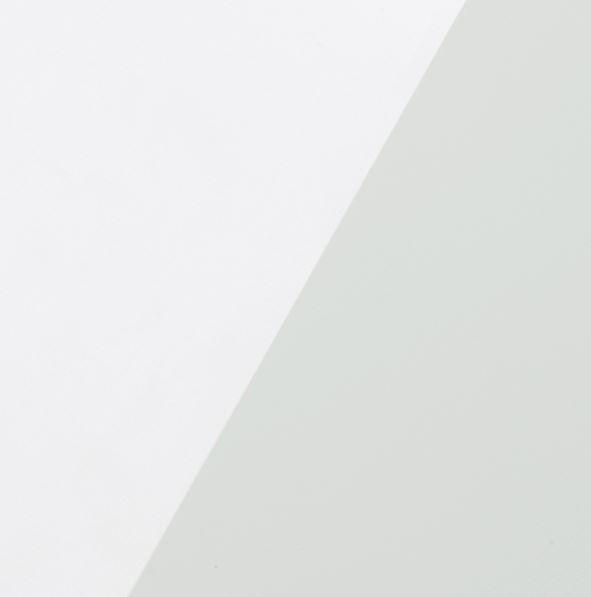 Monitor Audio Blanc